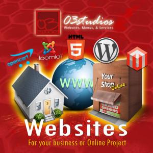 Buy a Website - Custom Kit